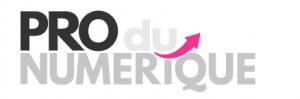 Logo PRO NUMERIQUE